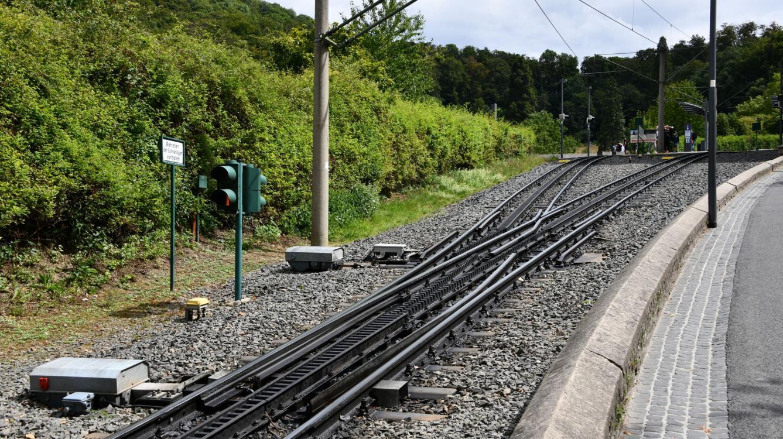 Pas simple l'aiguille d'entrée Riggenbach ! La ligne ouverte en 1883 est aujourd'hui électrifiée en 750 V